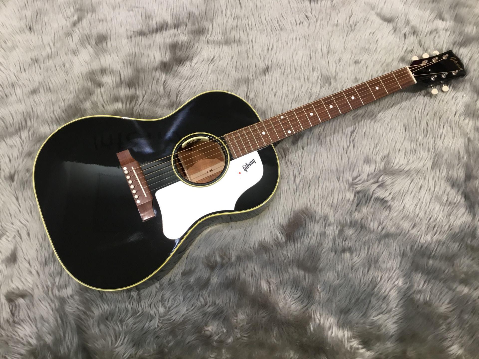 Gibson  1960s B-25 W/ANTHEM 写真画像