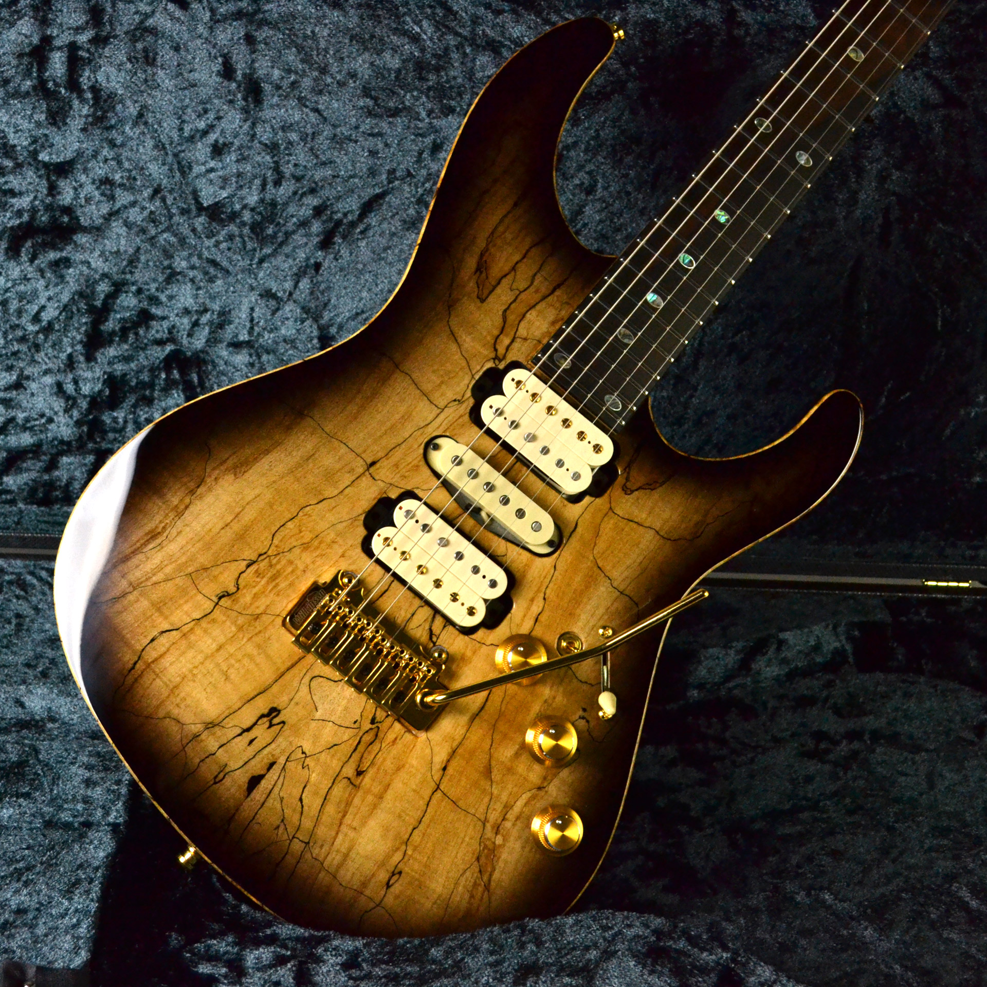 FREEDOM CUSTOM GUITAR RESEARCH  Hydra 2-Point 2... 写真画像