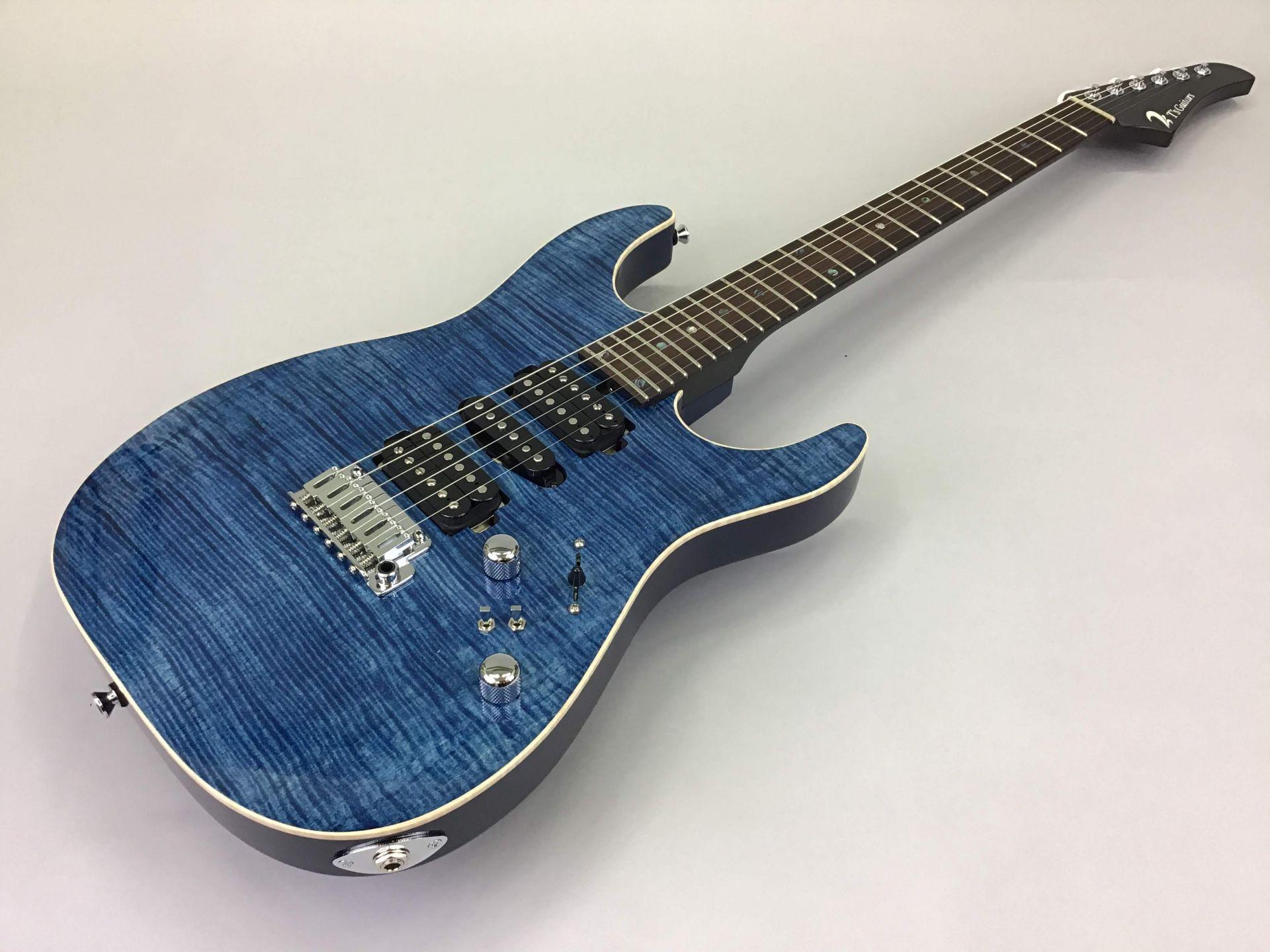 T's Guitars DST-Pro24 Custom 写真画像