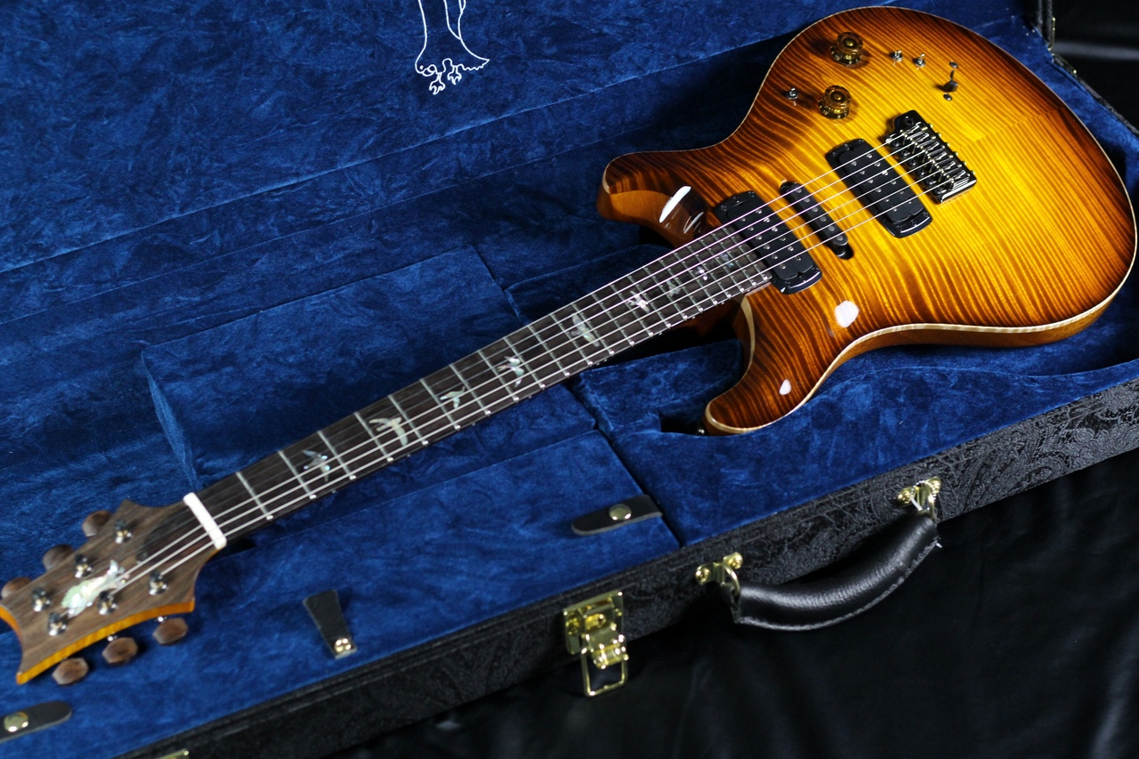 Private Stock Modern Eagle V Limited/McCarty Glowのボディトップ-アップ画像