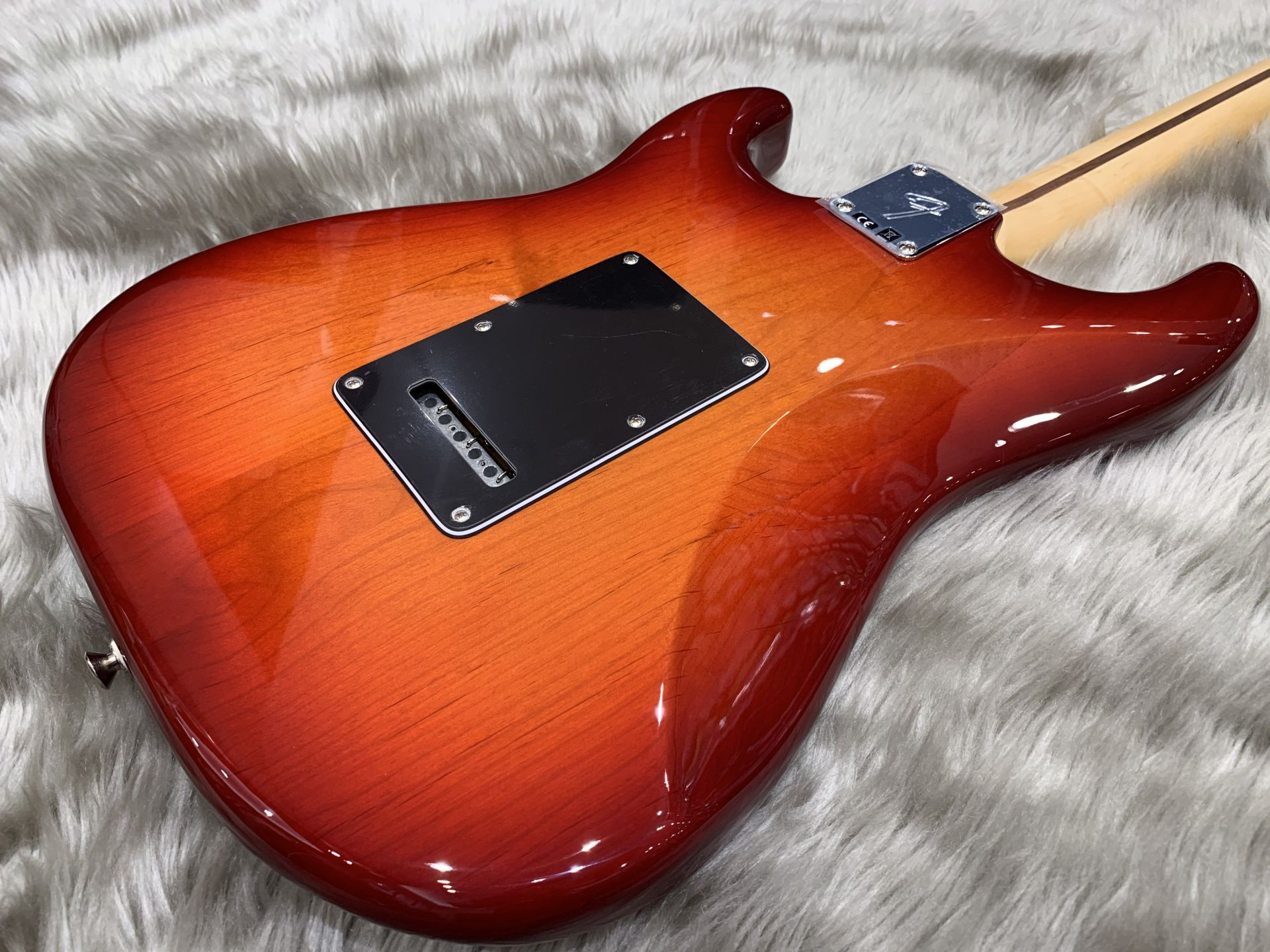 PLAYER STRATOCASTER PLUS TOPのボディバック-アップ画像