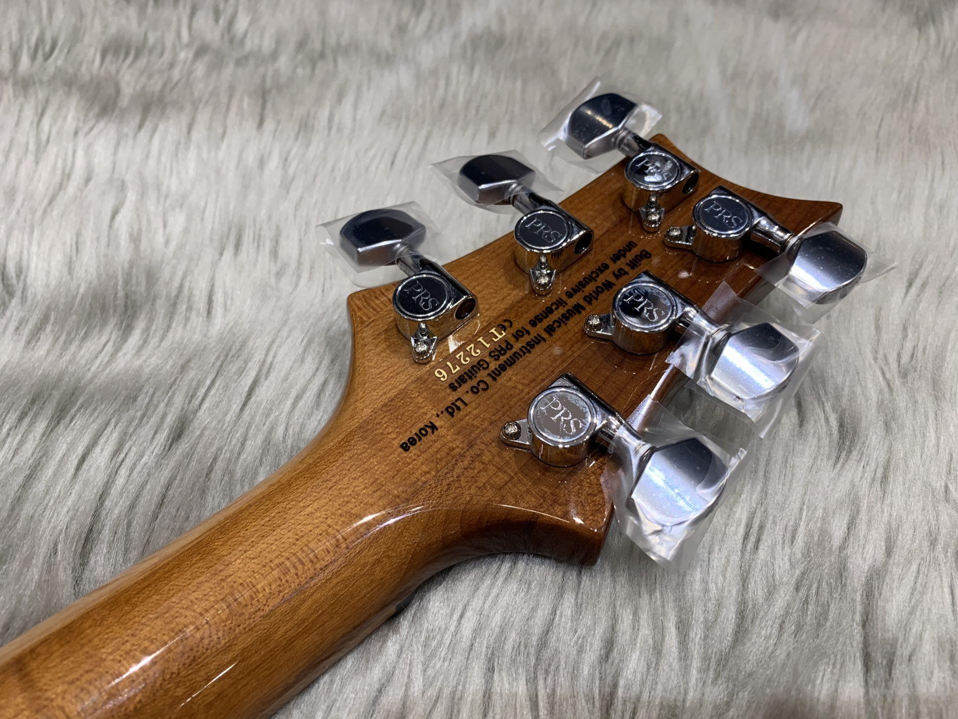 SE Custom24 Roasted Mapleのヘッド裏-アップ画像