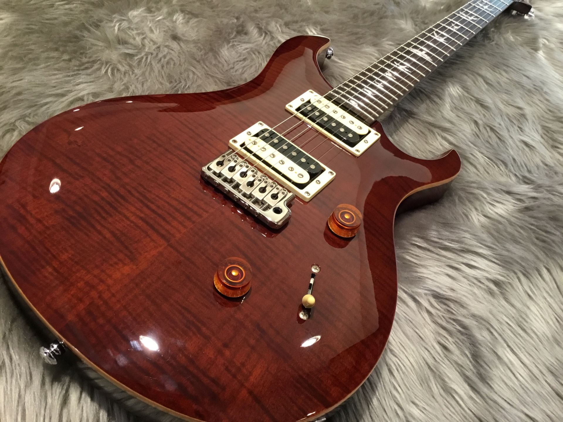 Paul Reed Smith(PRS)  SE CUSTOM24 写真画像
