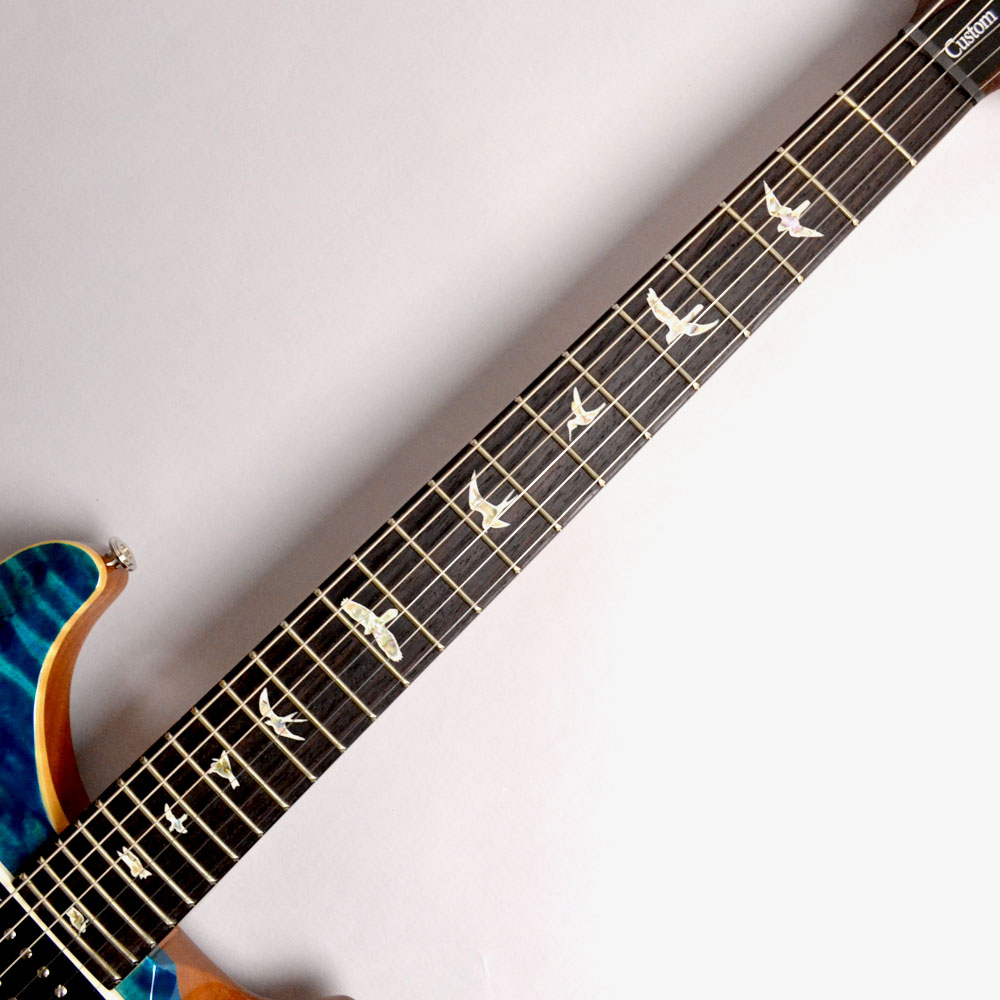Custom24 TR Blue Matteoの指板画像