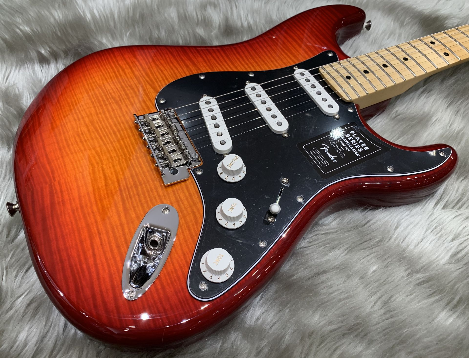 PLAYER STRATOCASTER PLUS TOPのボディトップ-アップ画像