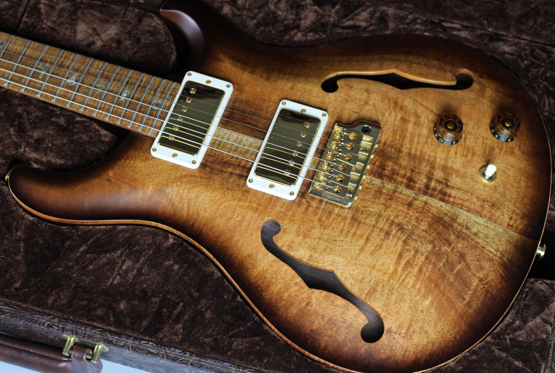 Private Stock #7662 Custom24 Semi-hollow With Two f-holes【Toshi Hiketa氏のレビュー動画】のケース・その他画像