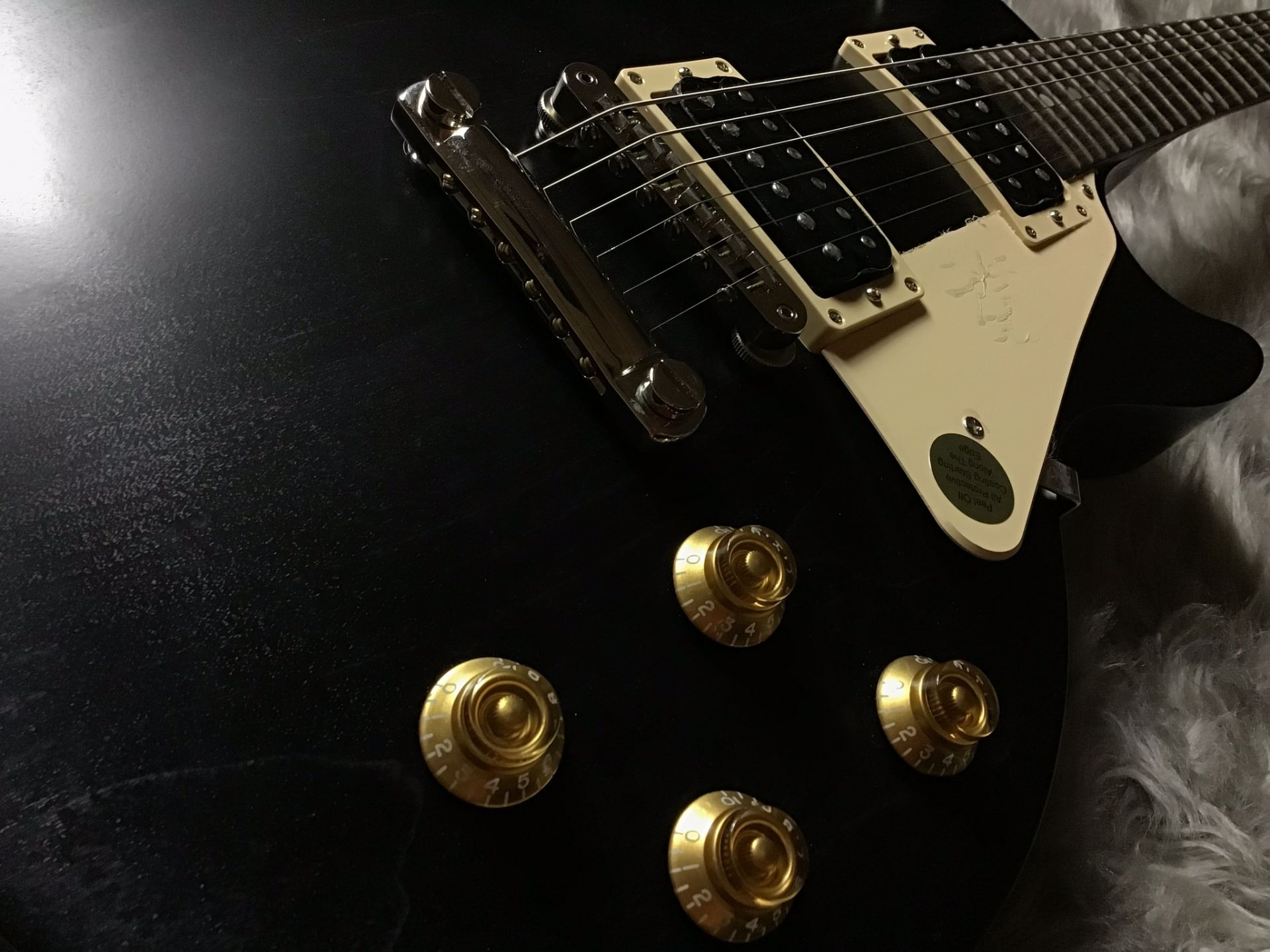 LP Faded Tributeのケース・その他画像