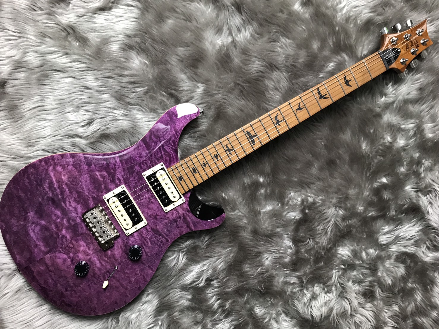 Paul Reed Smith(PRS)  SE CU24 RSTM 写真画像