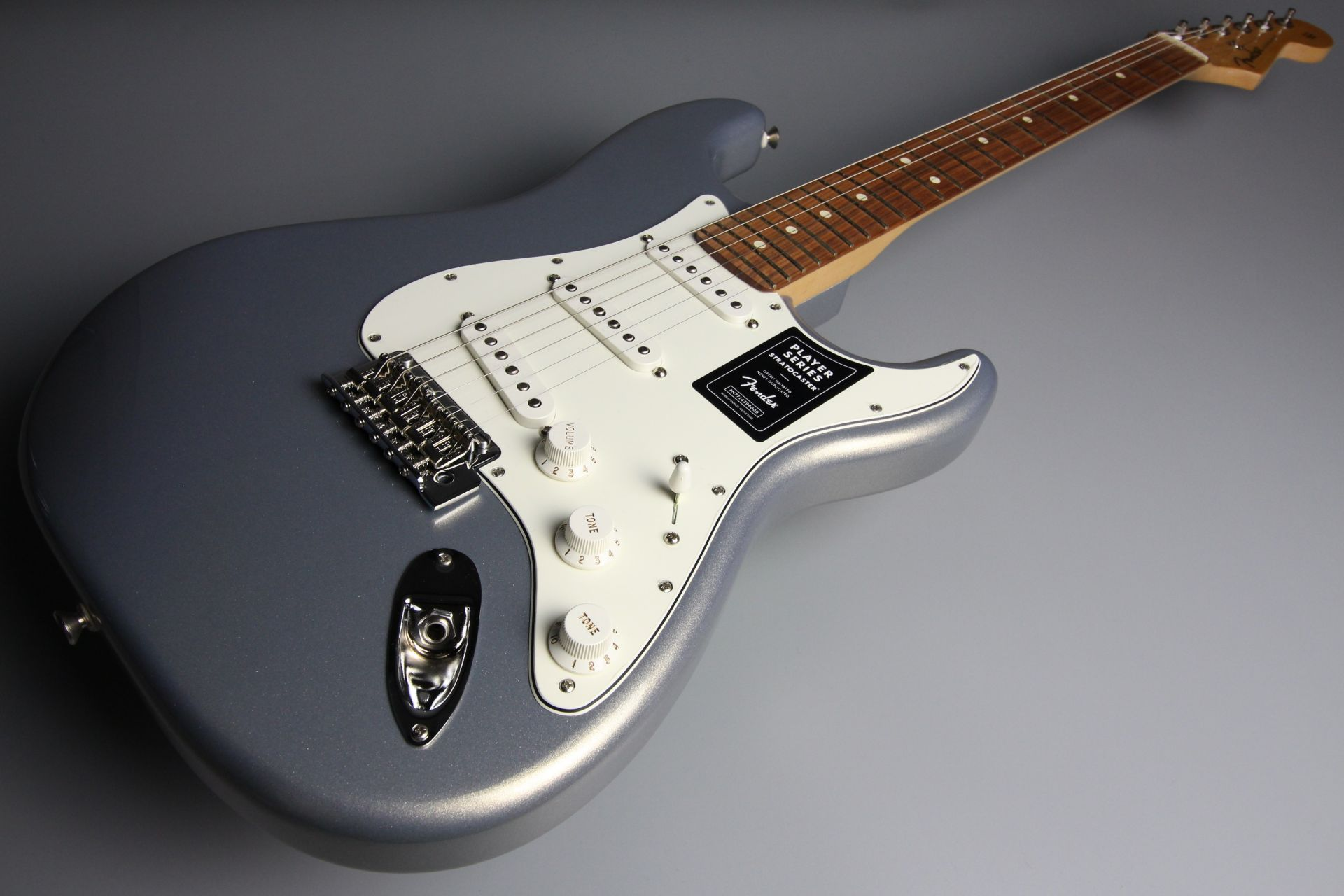 Player Stratocaster Silverのケース・その他画像
