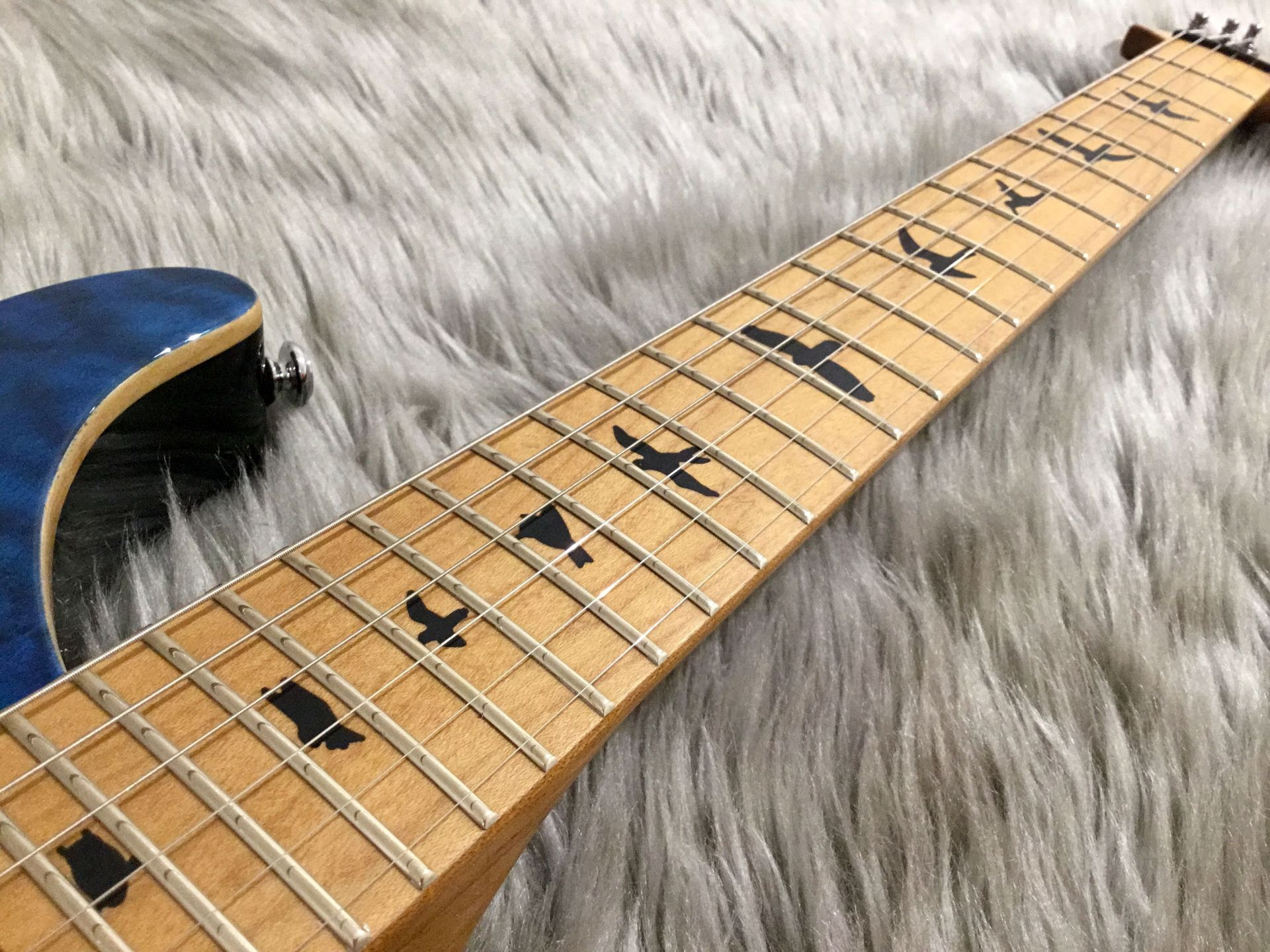 SE CU24 RSTM SN Custom 24 Roasted Maple Limitedの全体画像(縦)