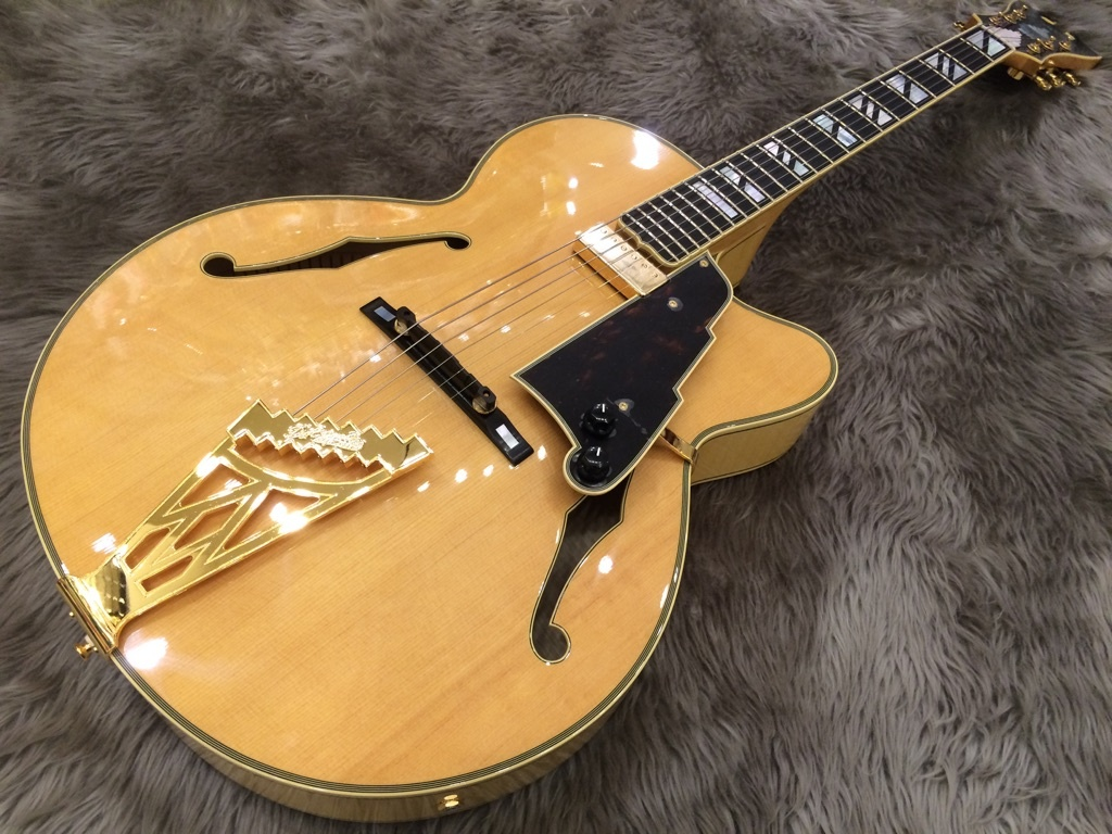 d angelico guitar ギタセレ guitar selection