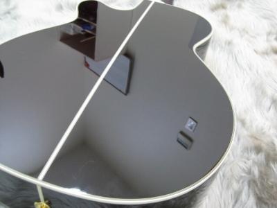 DMP50Sのボディバック-アップ画像
