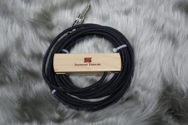 DSC02268-s