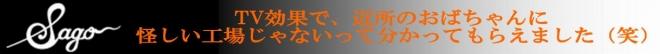 s-sago-banner3