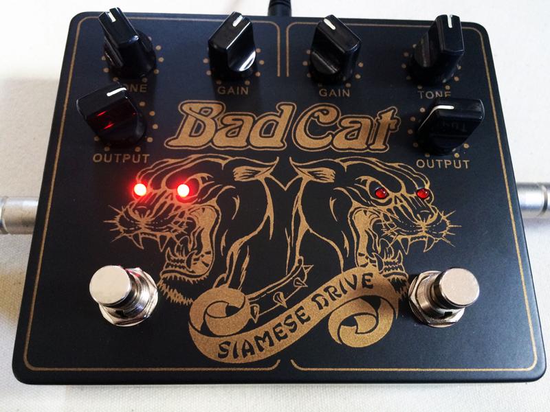 badcat01