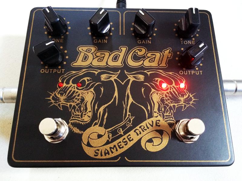 badcat02