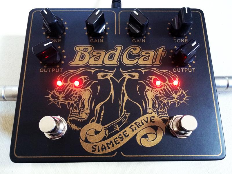 badcat03