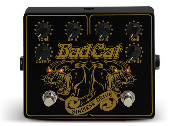 badcat_main